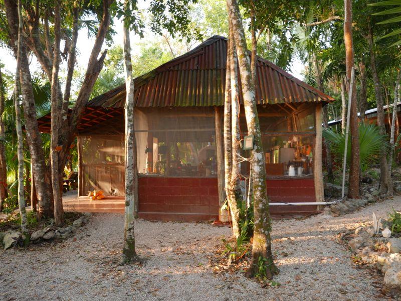 Community palapa